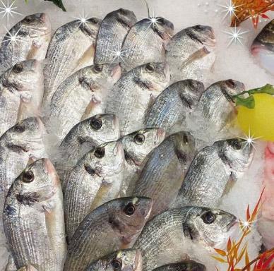 poissonnerie trets