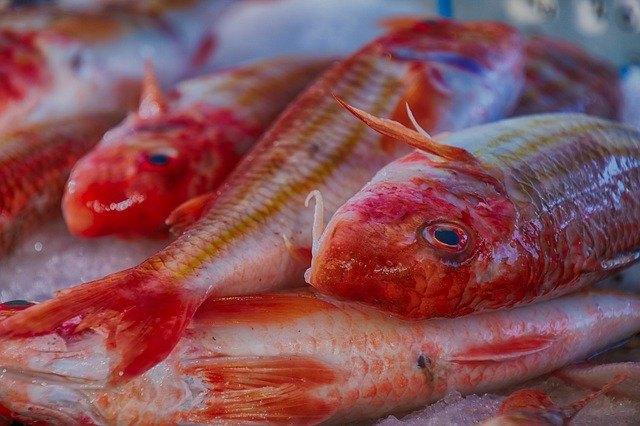 Trouver une poissonnerie à Aubagne